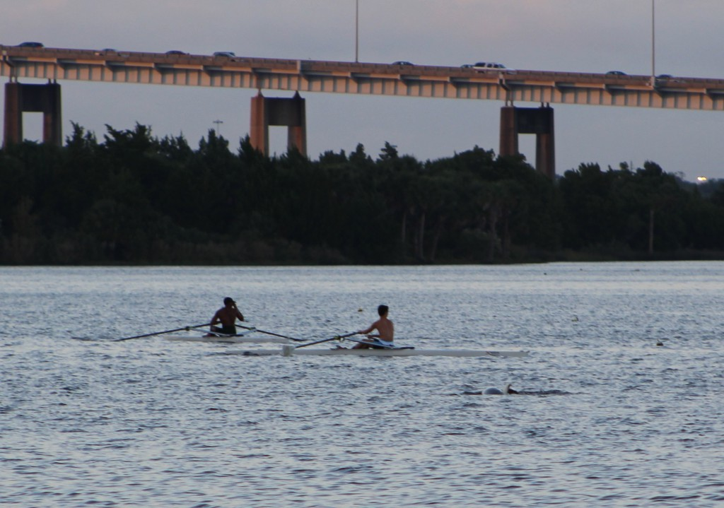 People and other River Mammals use the St. Johns River for many things, and People trash our river.